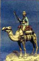 DG19 - Mounted Guardsman Camel Regt 1884-5